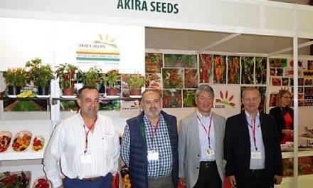 Akira Seeds muestra en Almería su gama de especialidades en pimientos, tomates, sandías y cebollas