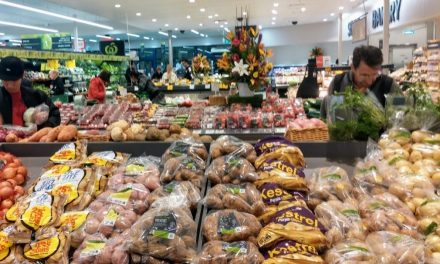 En Andalucía, ¿venden bien sus patatas tempranas?