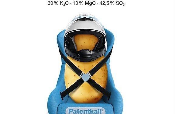 Fertilización en patata
