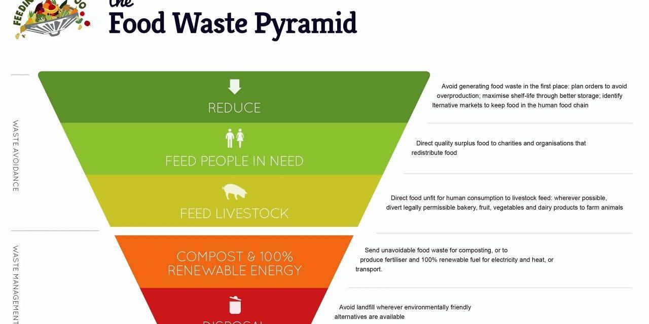 Desperdicio alimentario, una visión global