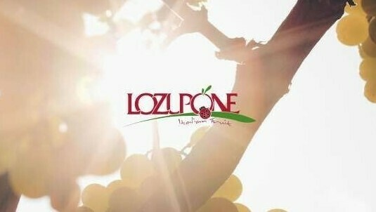 Uva moderna de mesa Lozupone Natale; calidad y máxima conservación