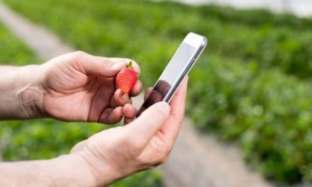 Alta tecnología aplicada a los cultivos