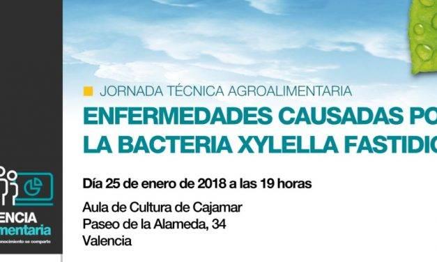 Cajamar presenta una nueva publicación dedicada a la Xylella Fastidiosa
