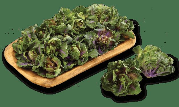 Kalettes®, la nueva forma de consumir kale