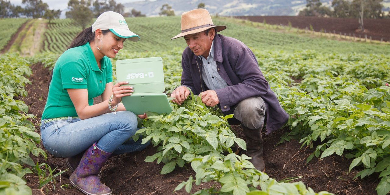 BASF crop protection innovation pipeline - TECNOLOGIA HORTICOLA