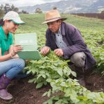 BASF crop protection innovation pipeline
