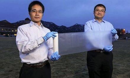 Un revolucionario plástico para aprovechar mejor la luz en los invernaderos
