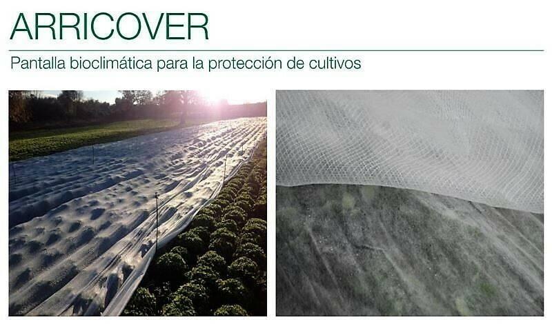Pantalla bioclimática para la protección de lechugas, batavias y baby leaf