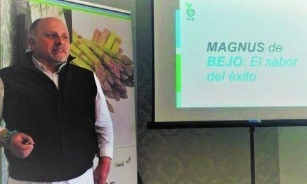 Magnus, un espárrago verde de éxito para el agricultor y con gran sabor