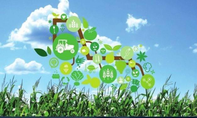 La Smart Agrifood un camino hacia a transformación digital en la agroalimentación
