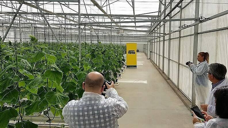 Semillas Fitóinvierte en Almería para ampliar sus instalaciones de I+D