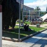Modernización de la producción y el comercio hortofrutícola de proximidad en Valencia