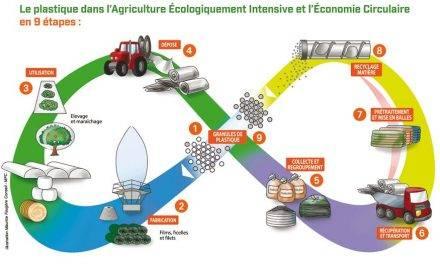 Economía circular de los plásticos y Repsol