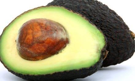 Investigación en poscosecha de frutos tropicales