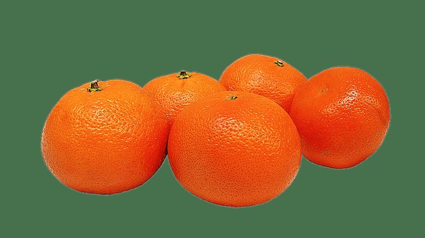 Acciones legales contra la explotación ilegal de la Mandarina Orri