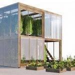 La nutrición orgánica puede sustituir a la nutrición mineral en cultivo urbano de pepino