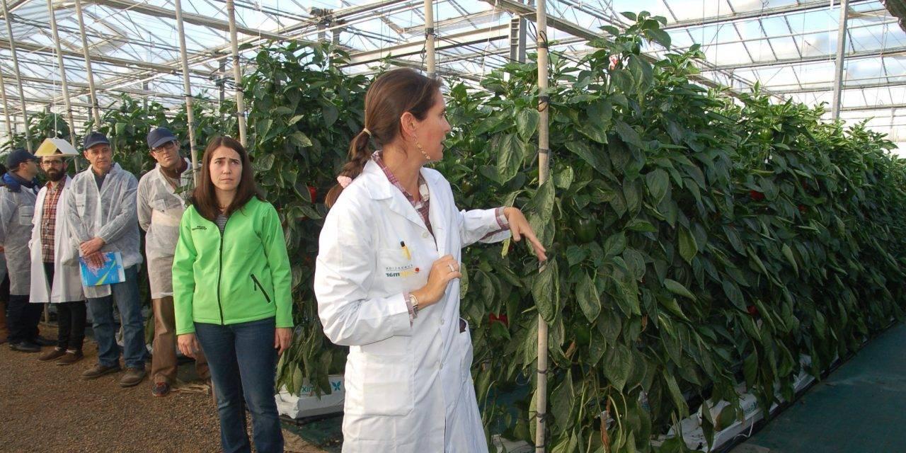 Grupo Agrotecnología en el II Simposio de Agricultura Ecológica