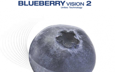 Blueberry Vision 2, la tecnología más innovadora para una clasificación precisa y cuidadosa de los arándanos