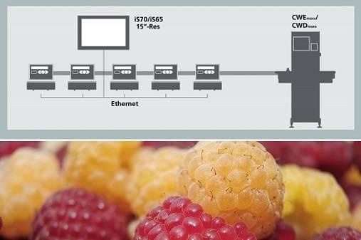 La solución óptima para el envasado de fruta delicada