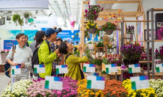 FlowerTrials maintains strong position