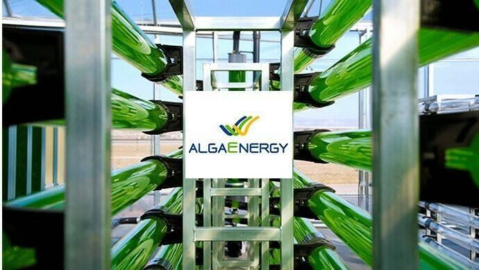 "AgriAlgae® ha obtenido el premio ""Macfrut Innovation 2018"""