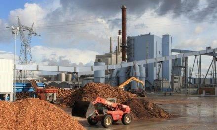 ¿Cómo establecer los sitios más apropiados para localizar una planta de biomasa?