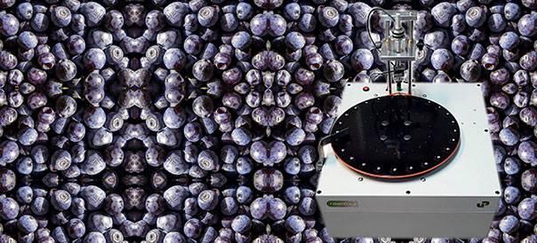 FT7, Firmtech 7, para medir la firmeza y el tamaño de frutos rojos