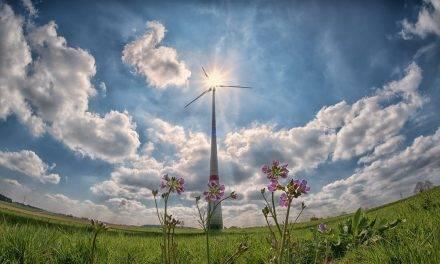 Innovación y sostenibilidad medioambiental en agroalimentación
