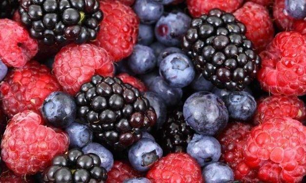 ¿Cómo tratar los arándanos, bayas y uvas con ozono?