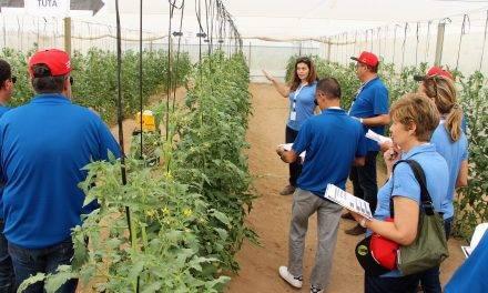El insecticida Cyazypyr® en cultivos hortícolas, en vía riego, Verimark® 20SC, y aplicación foliar, Benevia® 10OD
