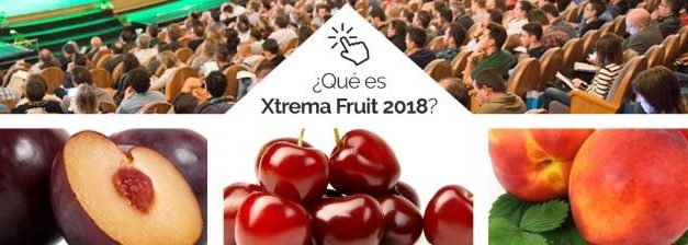 Xtrema Fruit acogerá el primer foro dedicado a la fruta de hueso ecológica en España