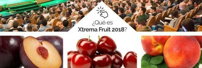 Xtrema Fruit, foro dedicado a la fruta de hueso ecológica en España