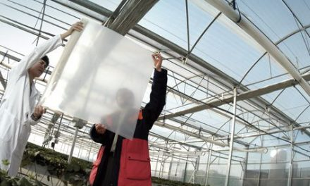 Repsol mejor productor europeo de polipropileno 2018