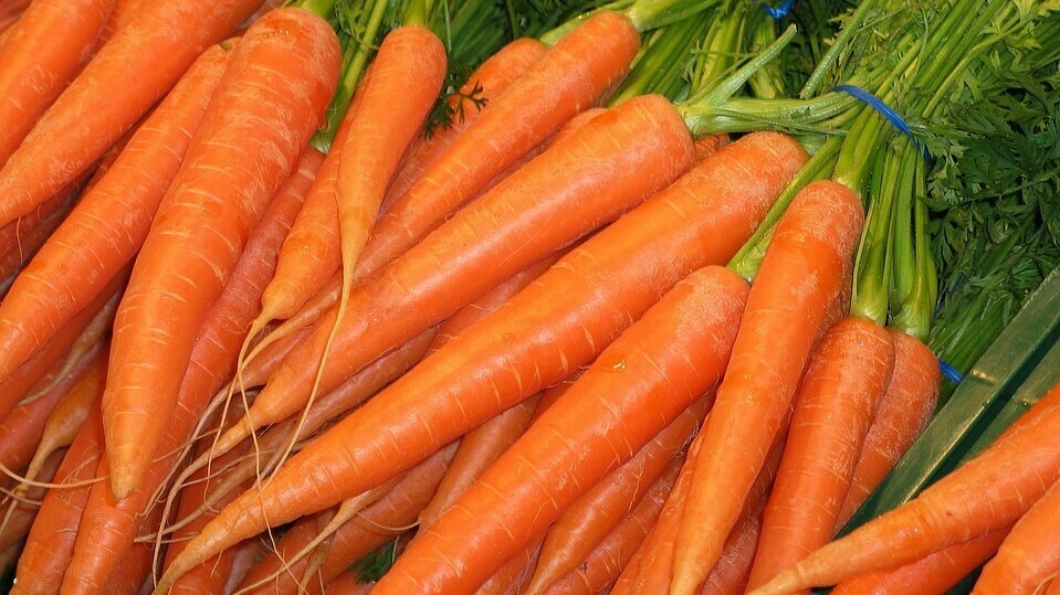How to get the best out of your carrots