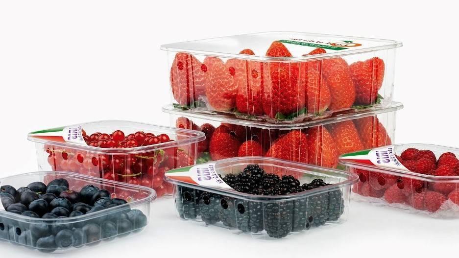 Microperforaciones y temperatura de 4°C, amplia la vida de las fresas 5 días