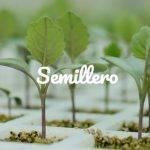 XV Jornadas Hortícolas en el Semillero Benihort
