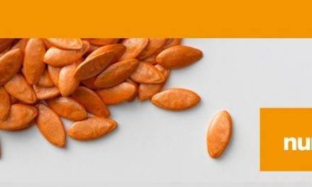 BASF compra los negocios de semillas hortícolas de Bayer