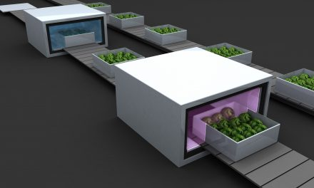 Plasmas no térmicos a presión atmosférica en aplicación poscosecha para el saneamiento de frutas y hortalizas