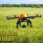 Drones en la agricultura: un vuelo hacia el futuro