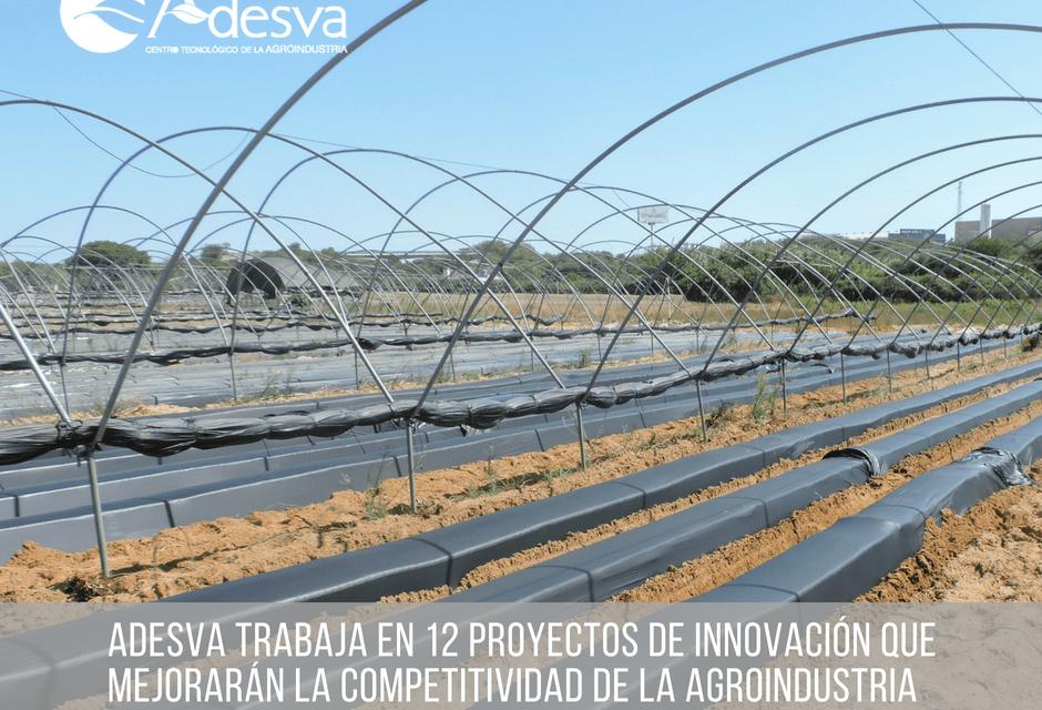 Adesva trabaja en 12 proyectos de innovación que mejorarán la competitividad de la agroindustria