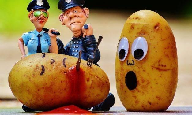 Crece el mercado mundial de procesamiento de patatas