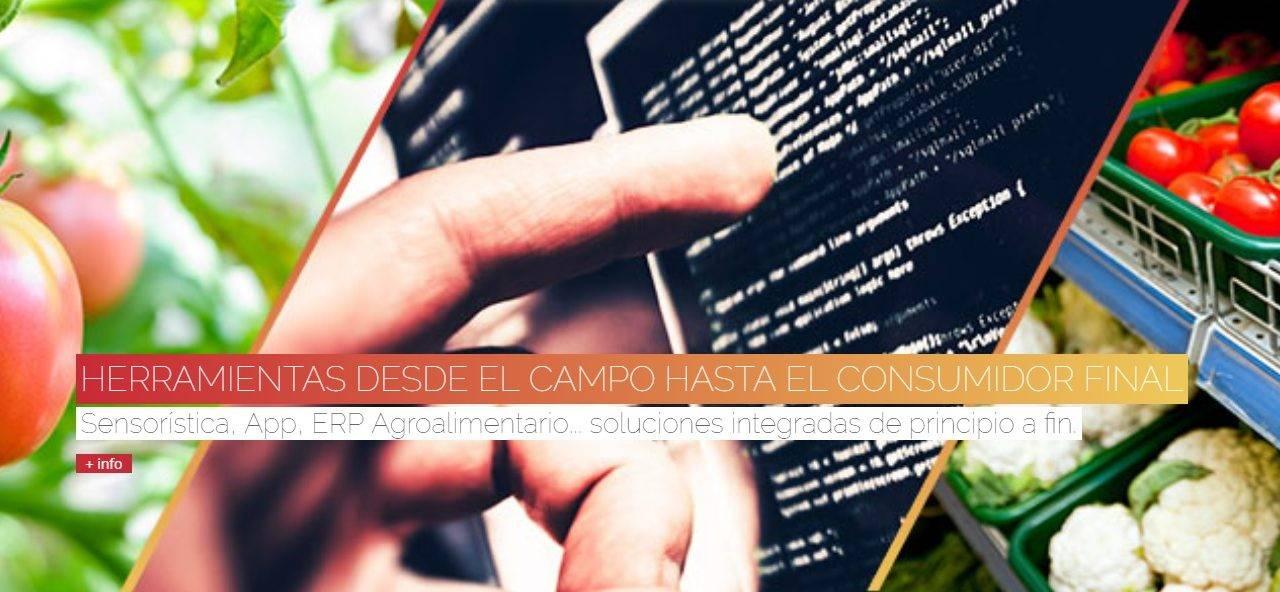 Digitalizar al sector hortofrutícola español