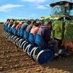 FMAX Transplanter, para una amplia variedad de hortalizas y tabaco