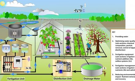 En Fertinnowa explican las tecnologías de fertirrigación más innovadoras de la UE