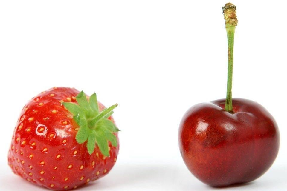 Nueva caja para fresas y cerezas