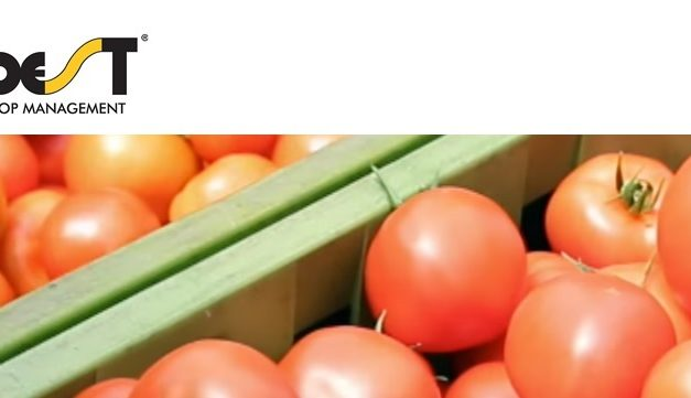 Asperello™ T34 Biocontrol gana el Retailers Choice Award