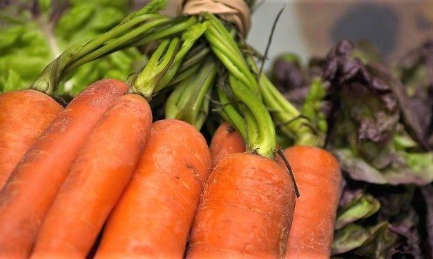 La mejora de la línea de confección aumenta la vida útil de las zanahorias de Abenhardt