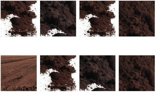 Sustratos y agroinsumos para berries, fruticultura y horticultura