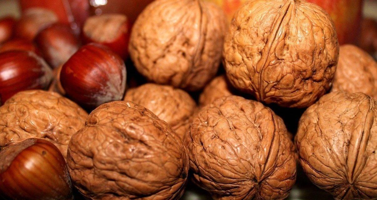 Actualidad en los frutos secos en España