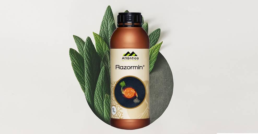 Razormin, un bioestimulante para hortalizas